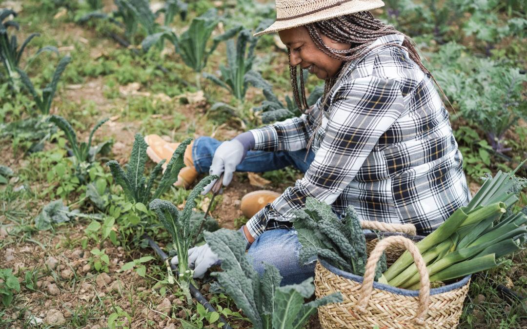 Black women legislators leading in agriculture policy